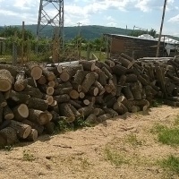 Продавам дърва за огрев в Благоевград