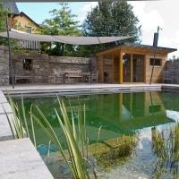 Био басейни, биологични басейни, езера за плуване
