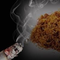 Продавам висококачествен нарязан тютюн