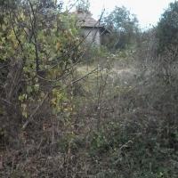 Продавам къща с двор в село Сушица